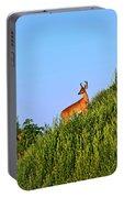 Deer Buck. Portable Battery Charger
