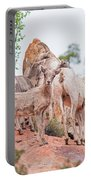 Desert Bighorn Family In Southern Utah Portable Battery Charger