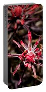 Desert Wildflower Portable Battery Charger