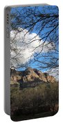 Desertscape Portable Battery Charger