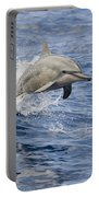Dolphins Leaping Portable Battery Charger