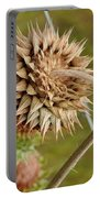 Dried Up Thistle Portable Battery Charger