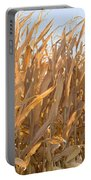 Dry Corn Stalks Portable Battery Charger