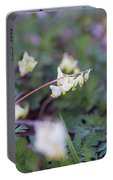 Dutchman's Breeches 3 Portable Battery Charger