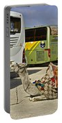 Egyptian Parking Lot Portable Battery Charger
