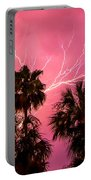 Electrified Palms Portable Battery Charger