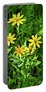Engleman Daisy Portable Battery Charger