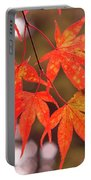 Fall Color Maple Leaves At The Forest In Kochi, Japan Portable Battery Charger