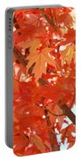 Fall Trees Colorful Autumn Leaves Art Baslee Troutman Portable Battery Charger