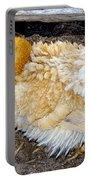 Feathered Finery Portable Battery Charger