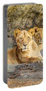 Female Lion And Cub Hdr Portable Battery Charger