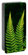 Fern Close-up Nature Patterns Portable Battery Charger
