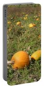 Field Of Pumpkins Portable Battery Charger