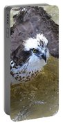 Fish Eagle Bird Playing In Water Portable Battery Charger