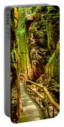 Flume Gorge Portable Battery Charger