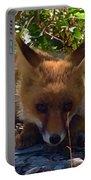 Fox Joy Portable Battery Charger by Colette V Hera Guggenheim