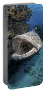 Giant Grouper, Great Barrier Reef Portable Battery Charger