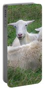 Goat Family Portable Battery Charger
