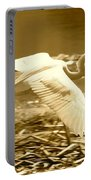 Golden Wings Portable Battery Charger