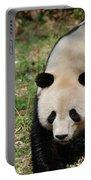 Gorgeous Black And White Giant Panda Bear Walking Portable Battery Charger