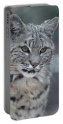 Gorgeous Bobcat's Face Up Close Portable Battery Charger