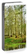 Grand Bayou Swamp  Portable Battery Charger