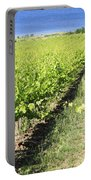 Grapevines In A Vineyard Portable Battery Charger