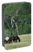 Grazing Pair Portable Battery Charger