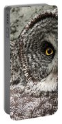 Great Grey Wake Up Portable Battery Charger