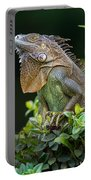 Green Iguana Iguana Iguana, Sarapiqui Portable Battery Charger