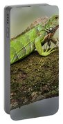 Green Iguana Iguana Iguana, Tarcoles Portable Battery Charger