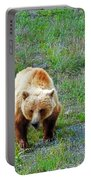 Grizzly Portable Battery Charger