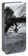 Hampstead Heath, London Portable Battery Charger
