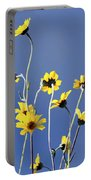 Happy Daisies Portable Battery Charger