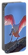 Happy Spoonbill Portable Battery Charger