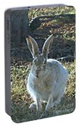 Hare Portable Battery Charger