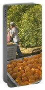 Harvesting Navel Oranges Portable Battery Charger