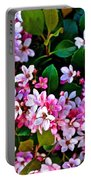Hawthorne At Pilgrim Place In Claremont-california   Portable Battery Charger