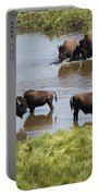 Hayden Valley Bison Portable Battery Charger