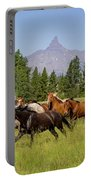 Head Em Up Move Em Out Portable Battery Charger