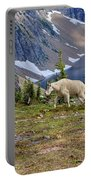 Hidden Landscape In Widescape Portable Battery Charger