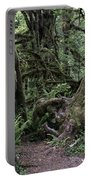 Hoh Rain Forest 3389 Portable Battery Charger