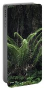 Hoh Rain Forest 3392 Portable Battery Charger