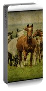 Horses 27 Portable Battery Charger
