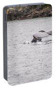 Humpback Whales 3 Portable Battery Charger