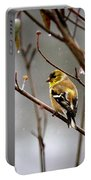 Img_0001 - American Goldfinch Portable Battery Charger