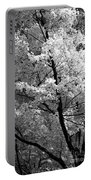 Infrared Tree Pic Portable Battery Charger