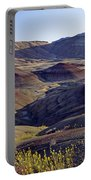 John Day Fossil Beds  Portable Battery Charger