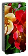 Joseph's Coat Roses At Pilgrim Place In Claremont-california  Portable Battery Charger