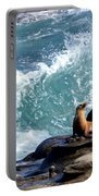 La Jolla Cove Portable Battery Charger